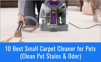 best small carpet cleaner for pets
